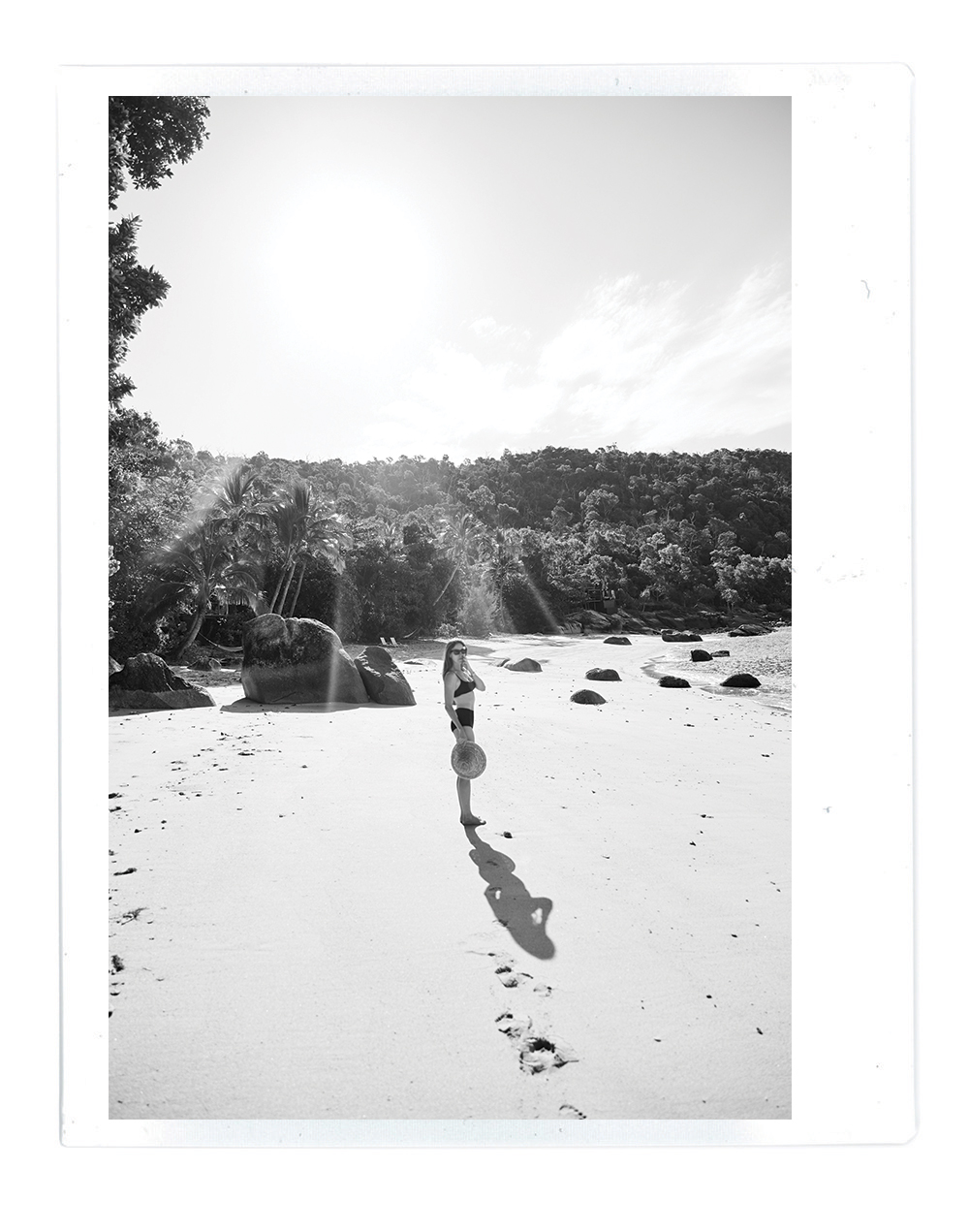 Photo diary, bedarra island, great barrier reef, queensland, oracle, fox