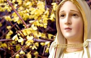 Oração a Nossa Senhora do Silêncio