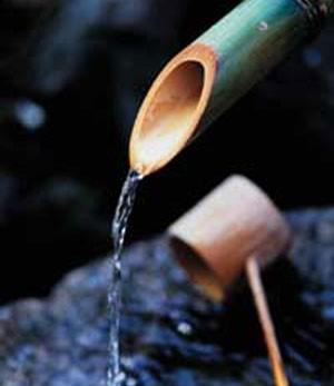 il+bambù,+l'acqua++e+il+ramaiolo.jpg