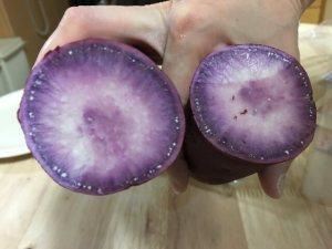 犬 紫いも 紫芋 食べれる 与える 大丈夫