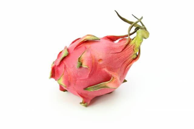 犬 ドラゴンフルーツ 食べる ピタヤ