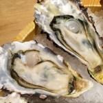 犬 牡蠣 大丈夫 食べる 与える 毒 カキ