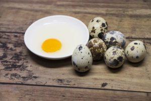 犬 うずら うずらの卵 アレルギー 食べる 与える 大丈夫