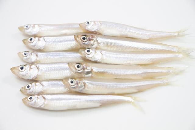 犬 ワカサギ 川魚 与える 大丈夫 下処理 骨 与え方 公魚