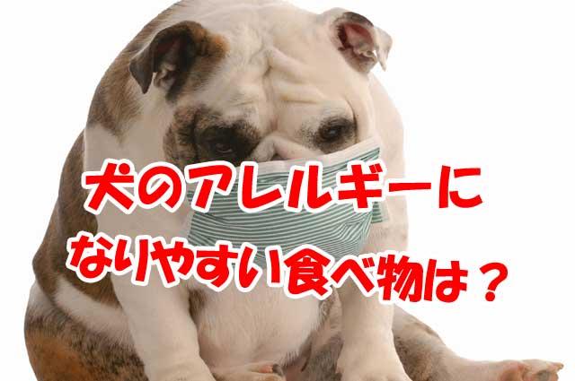 犬のアレルギーになりやすい食べ物