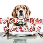 犬 アレルギー 検査 項目
