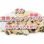 犬 生理 オムツ
