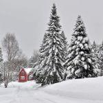 Aroostook-County-Winter-56a3effc3df78cf7727ffd22