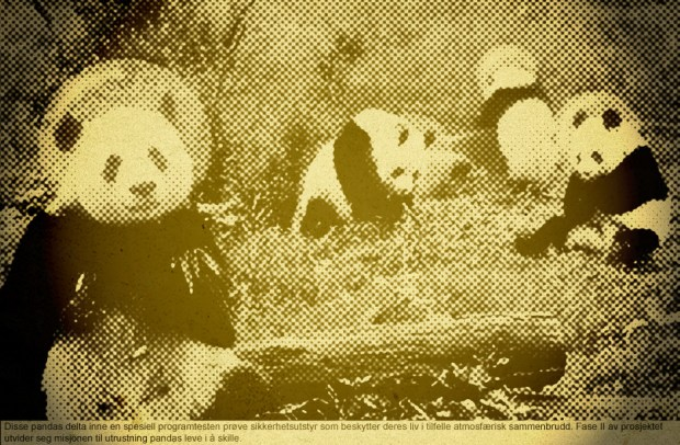 Protecting Our Pandas