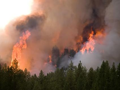 U.S. FOREST Service and other are fighting a large blaze 100 miles north of San Francisco (USFS photo).