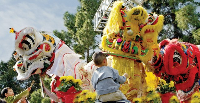 THE LION DANCE is traditional for the New Year. This is the Year of the Rooster, and will be celebrated at the Tet Festival in Garden Grove and a parade in Westminster.