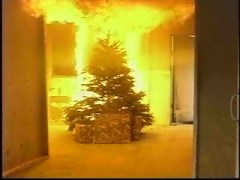 kpic-120508-burning-christmas-tree
