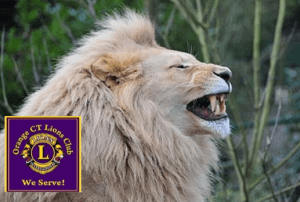 laughing lions club