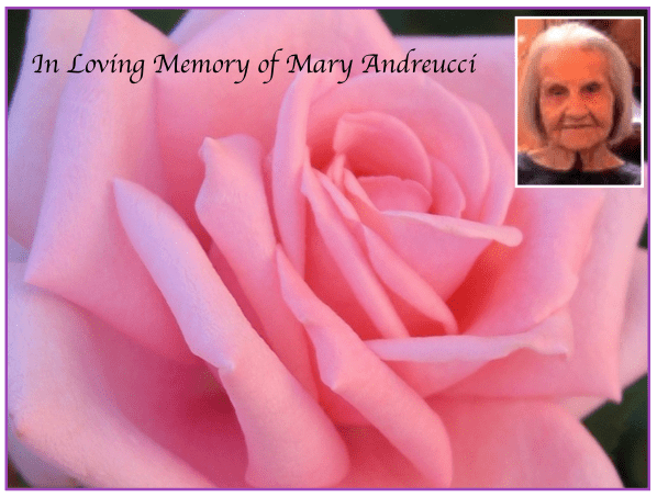 Obituary: Mary Polek Andreucci, 94, Beloved Mother Of Rosemary Leone