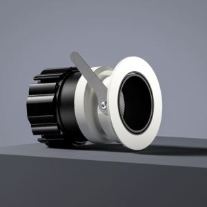 Mina Adjustable LED Downlight