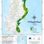 Haribon Foundation Sierra Madre Stifles World S Fiercest Typhoon This Year Orange Magazine