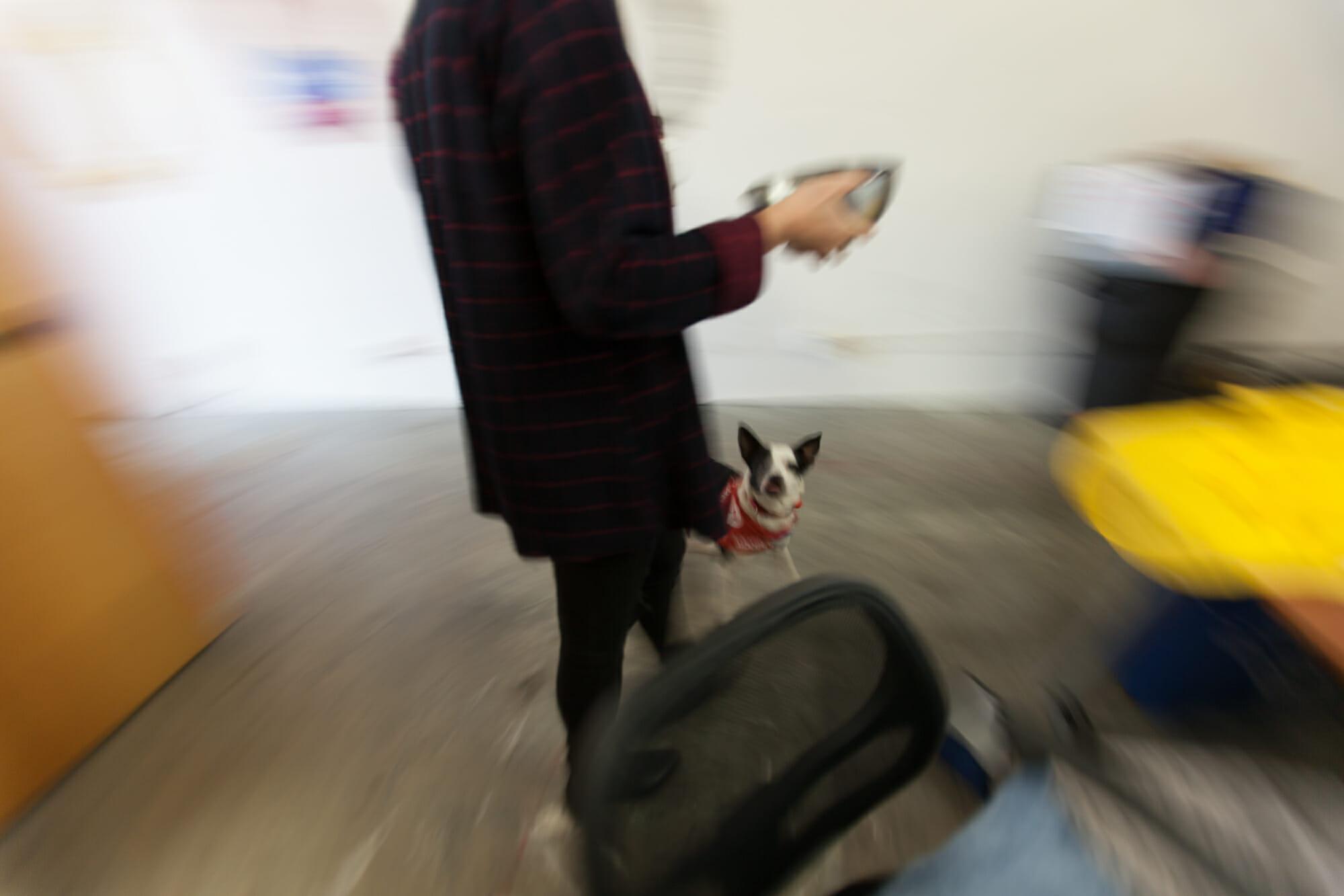 Danielle on the move