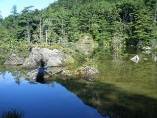 明神二の池