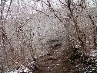 由布岳登山道