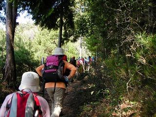 金山登山道2