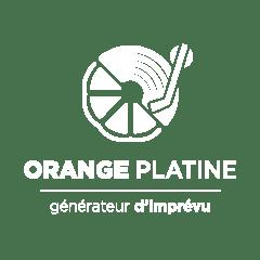 Logo Orange Platine