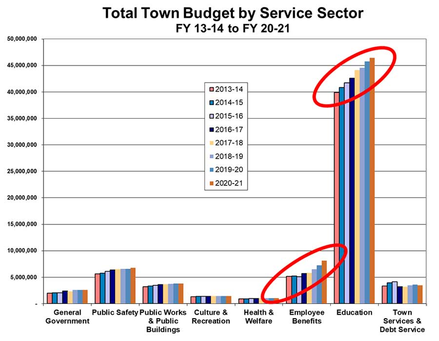 total town budget by service sector