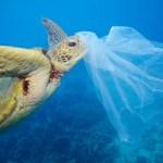 Tanzania haram penggunaan plastik, denda 1 bilion Tanzania bagi yang ingkar