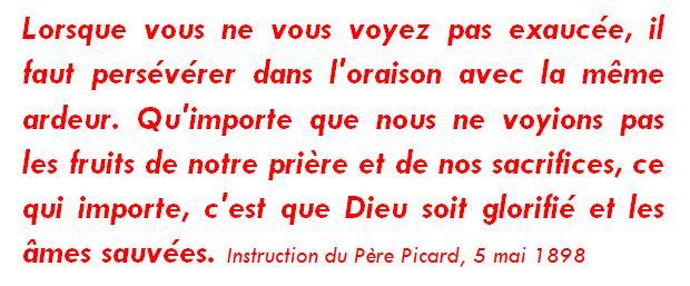 Pensée-Picard-6