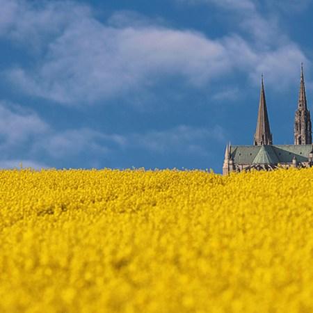 Dimanche 02 juin 2019/Septième dimanche de Pâques - Page 20 Beauce-cathedrale-450