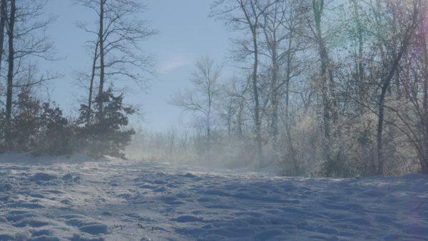 5-600x338 Aventura CaLuCe: a guia na neve
