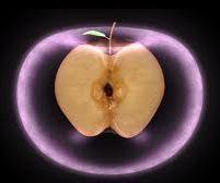 La manzana prohibida para Adam