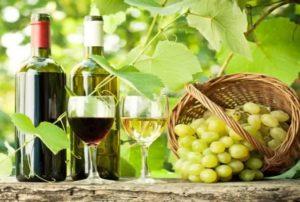 Wine production using fruit juice