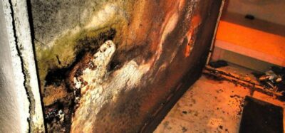 Picture of mold damage.
