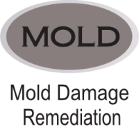 gray mold damage remediation icon