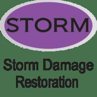 purple storm damage restoration icon