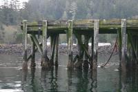 Neah Bay hydrophone dock