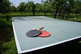 Anyone for (table)tennis?