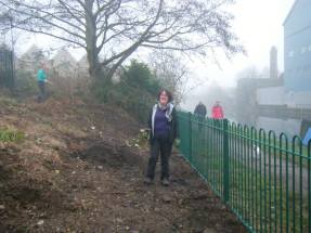 Planting bulbs into the rubble slope at the Piggeries, hard and back-breaking work