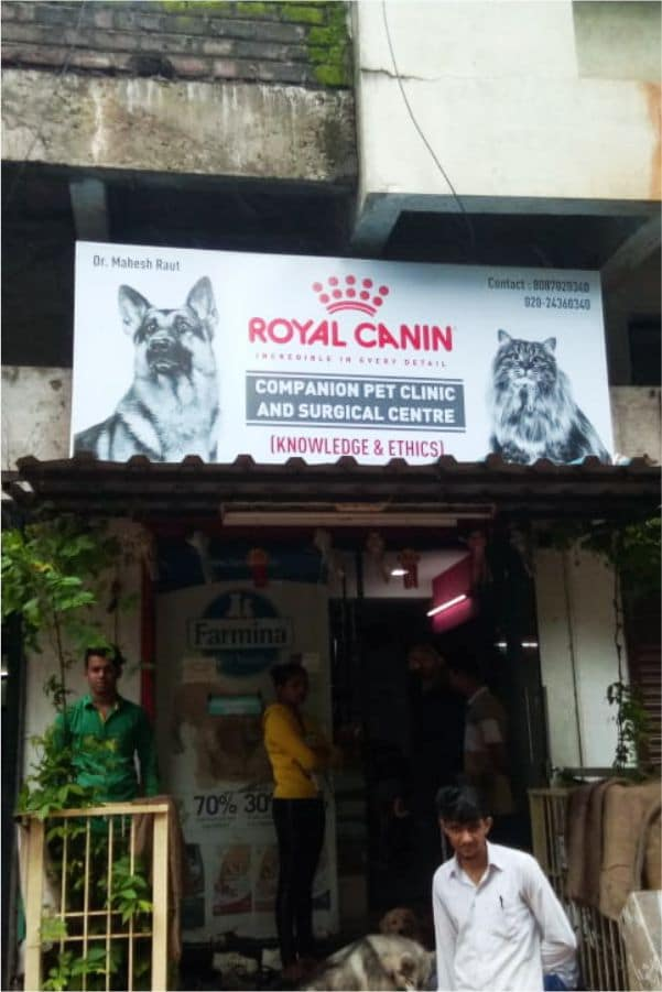 frontlit flex board with metal frame fitted on top of the Royal Canin store entrance