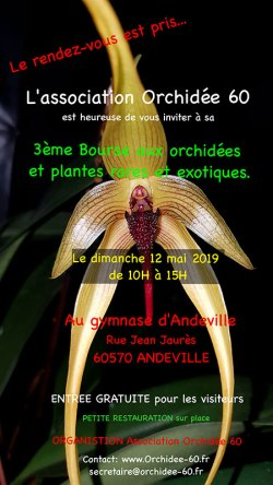 bourse-orchidees-andeville-mai-2019