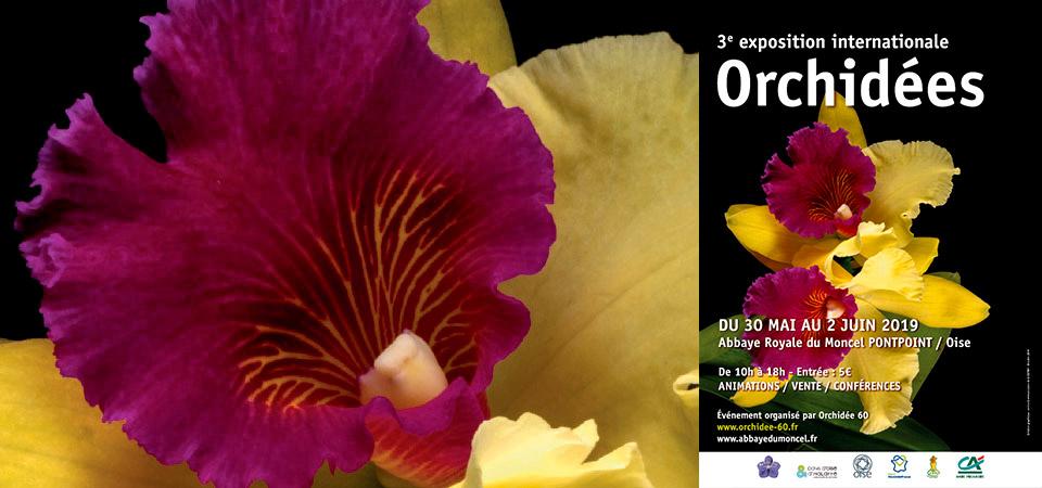 Expo Orchidées – Abbaye du Moncel – mai 2019