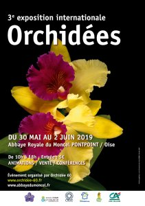 expo-international-2019-orchidees-abbaye-du-moncel-orchidee60
