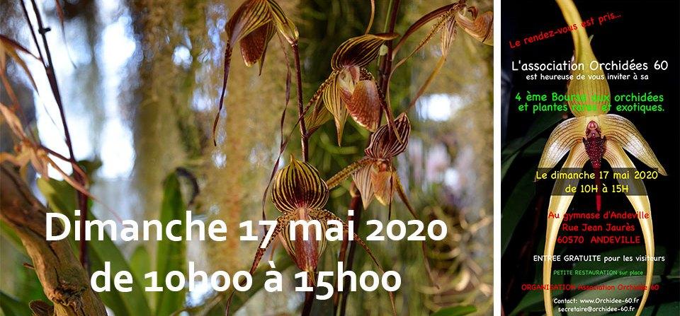 4ème bourse aux Orchidées et plantes rares – Andeville – mai 2020