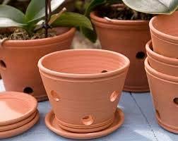 Terracotta Orchid Pot
