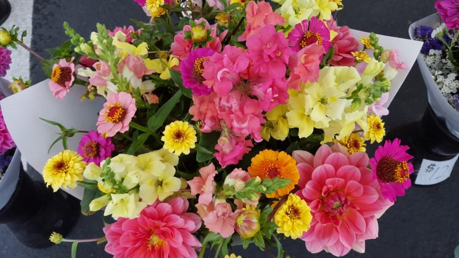 Hill Tree Farms flowers..