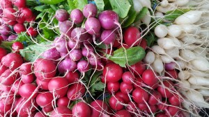 Gorgeous radishes from RJ Farms this week!
