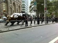 Toro-protegido-600x448