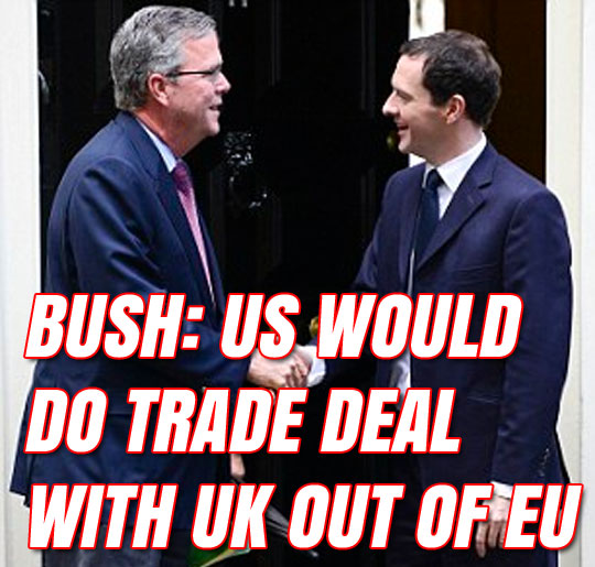 bush-eu-uk