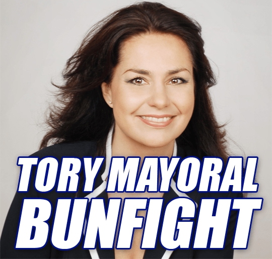 HEIDI ALLEN IN MAYORAL ROW