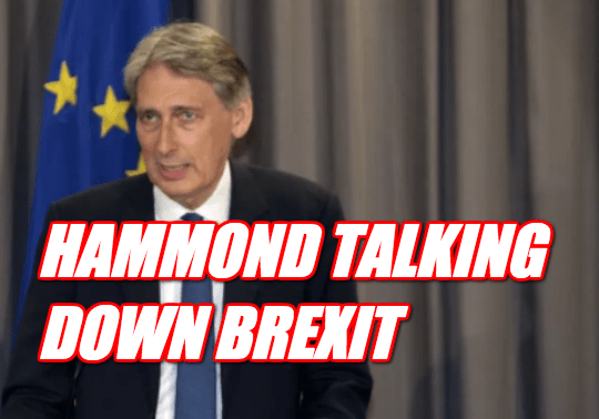 "Hammond and Treasury ""On Manoeuvres"" Against Brexit"